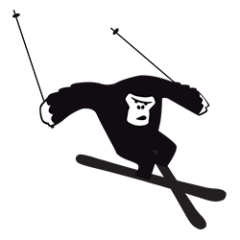 category-freeski